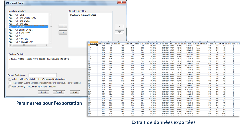 data viewer2